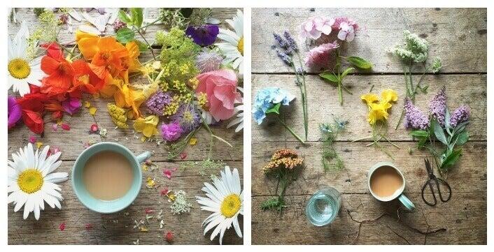 çiçek ve kahve