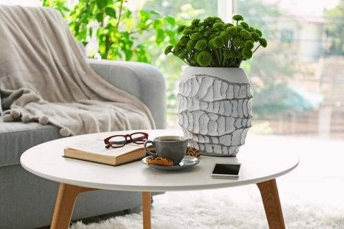 beyaz saksılı bitki