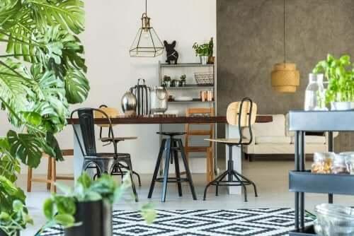 Sürdürülebilir dekorasyon için salonda bitki kullanımı