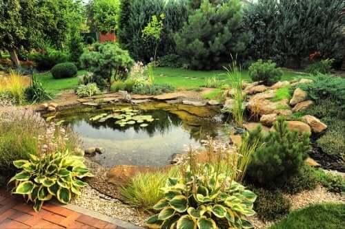 Seveceğinizi Düşündüğümüz Üç Bahçe Göleti