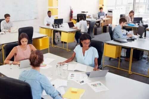 Sarı masaların olduğu ortak çalışma alanları