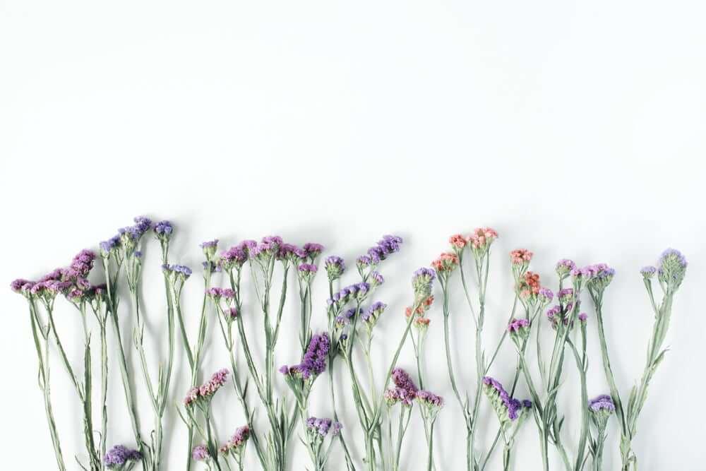 kurutulmuş bitkilerle dekorasyon