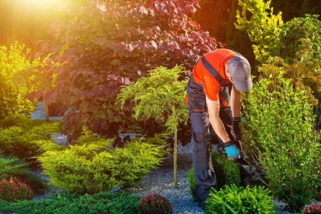 Bahçenizi Yaza Hazırlamanın 5 Yolu