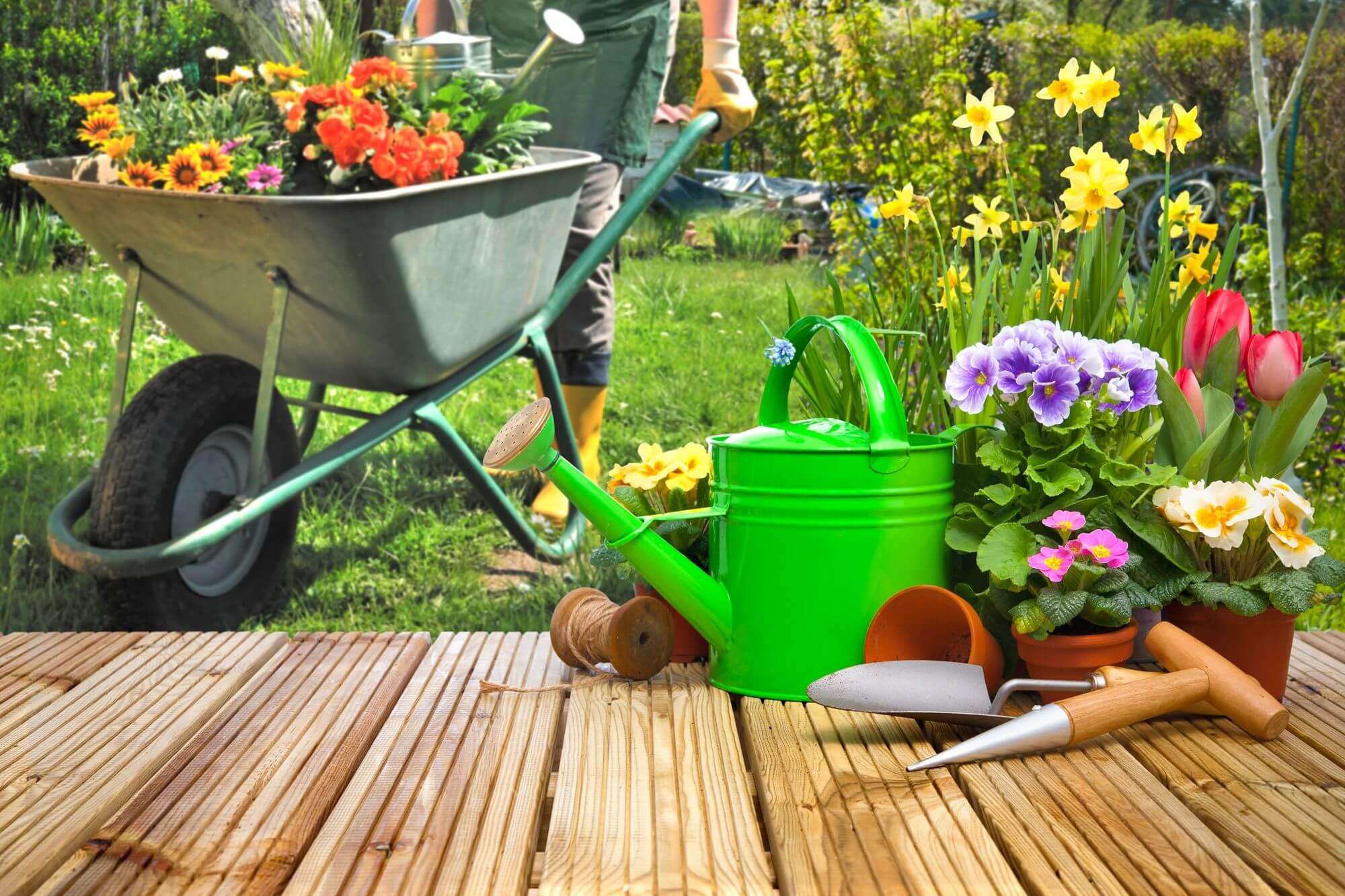 bahçe aletleri, çiçekler