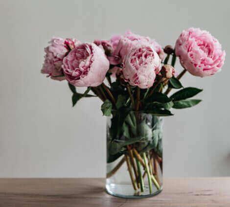 Çiçeklerin anlamları ile ilgili neler biliyorsunuz?