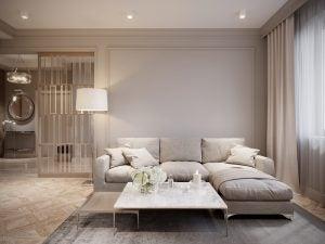 Gray living room: sofa ideas.