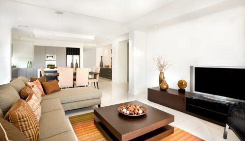 Designer living room color