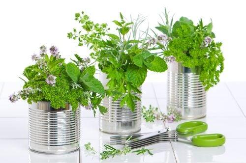 Flower vase tin can