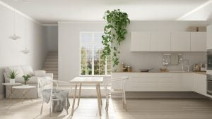 Natural elements like plants are a common sight in the Nordic style kitchen