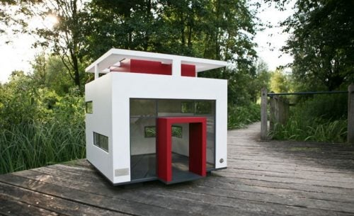 5 Dog Houses for Your Backyard
