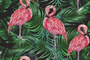 Exotic animal motifs are usually combined with the tropical decor style.