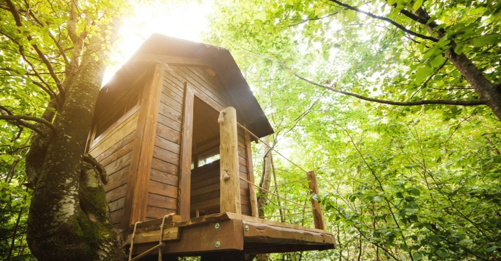 How to Build a Tree House for your Children