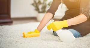 If your rugs aren't too dirty, go over them with a damp cloth.
