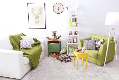 Cozy living room layout sofas