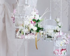 Hang your bird cages from the ceiling next to the window to give your home a breath of fresh air.