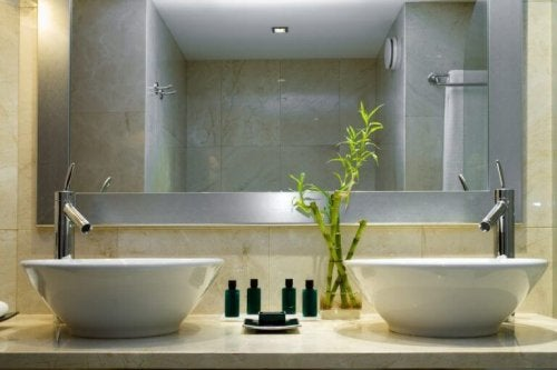 bathroom with bamboo branches on sink