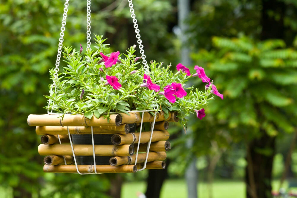 hanging baskets balcony 2