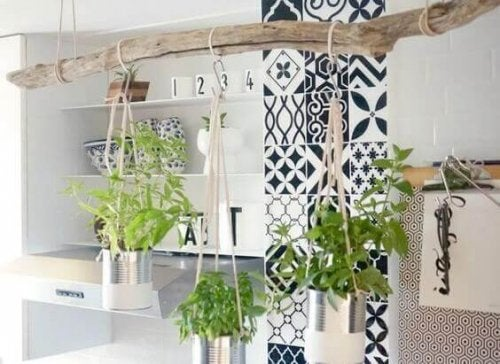 4 Tips for Making a Hanging Garden