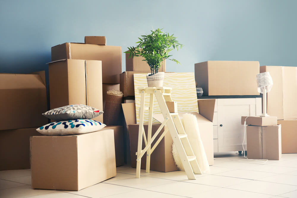 safe home reno moving