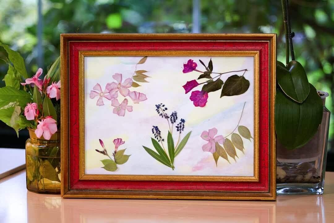 flower petals framed