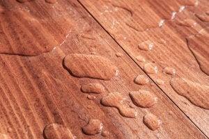 Water on a hardwood floor.