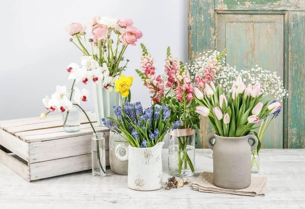 Flowers in vases.