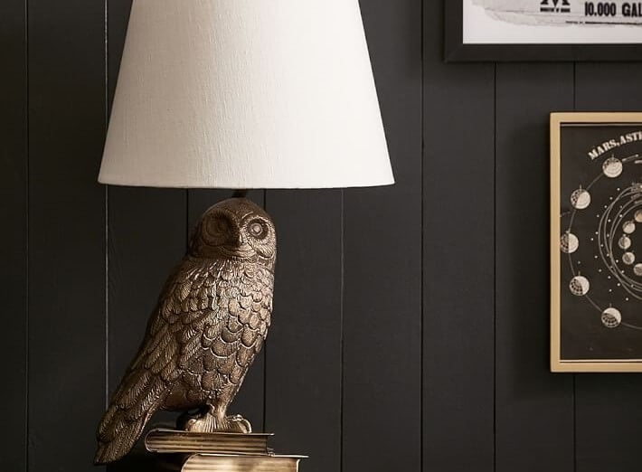 Hedwig lamp for a teenager's bedroom