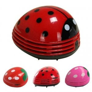 Ladybug design.