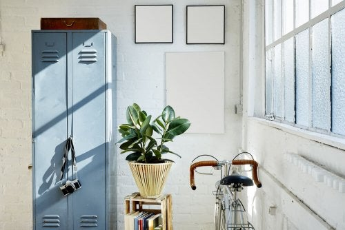 Metal Cabinets for Your Treasured Belongings