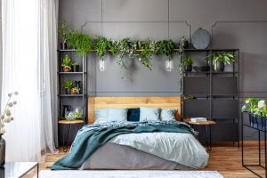 A master bedroom layout with lots of shelves and plants.