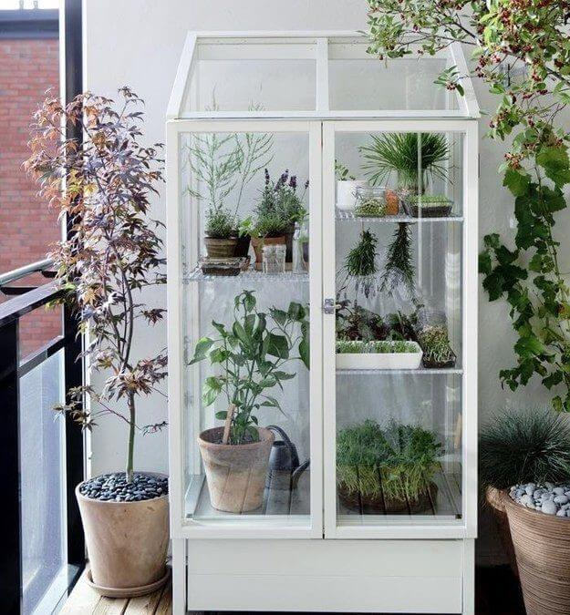 balcony garden greenhouse
