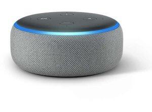 The Amazon Alexa.