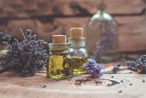 Lavender oil in glass bottles.