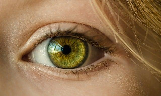 colors human eye