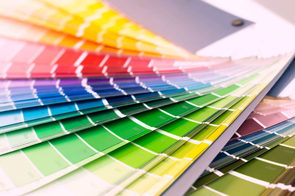 color palette what