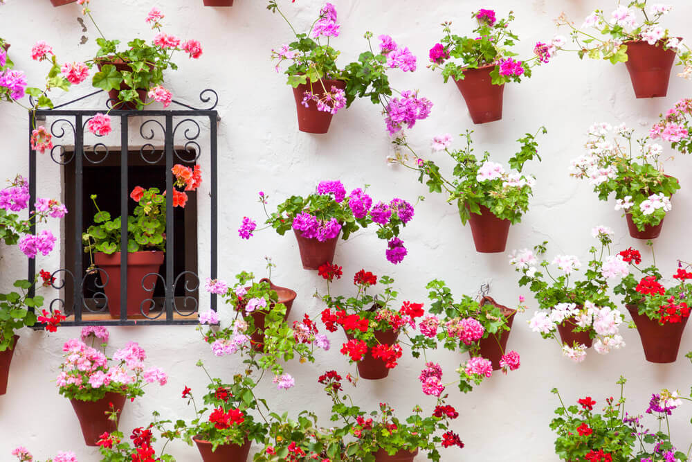 Andalusian courtyard flowerpots