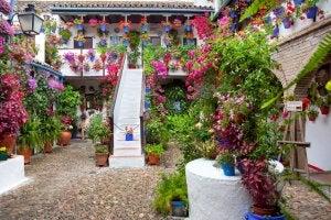 Spanish luxury garden.