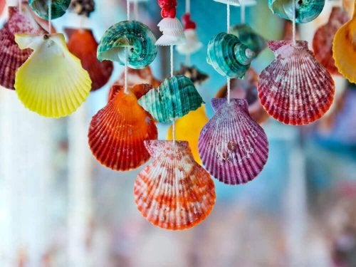 Ideas to Decorate with Seashells and Conches
