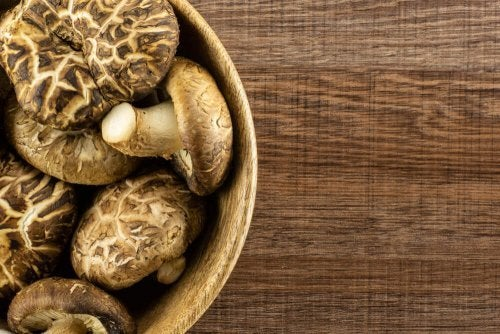 Decorating with Dried Mushrooms and Fungi