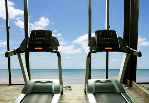 Two treadmills in a gym in front of the ocean.