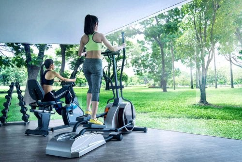 One of the first bioclimatic gyms created, located in Mexico.