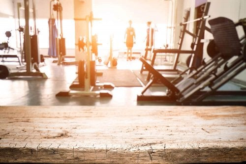 Bioclimatic Gyms: The Idea Behind Bioclimatic Architecture