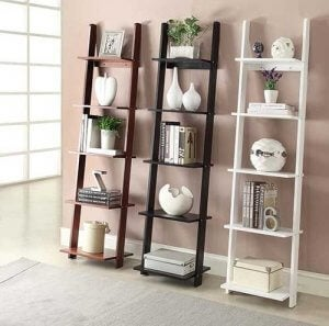 Ladder bookshelves.