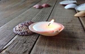 DIY bathroom ideas: seashell candle holders.