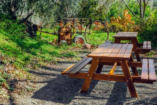 Wooden picnic tables.