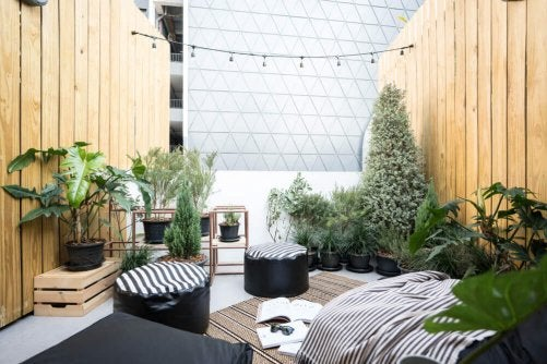 A chill out space with plants and seats.
