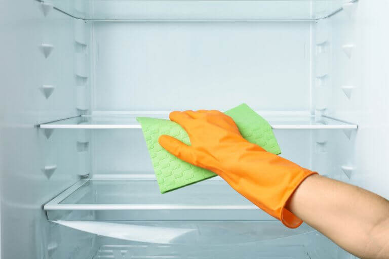 Clean the fridge and throw out any old expired food