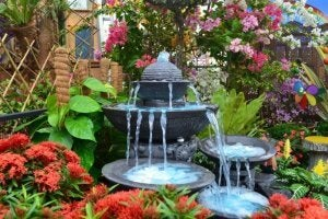 Feng shui and water features.