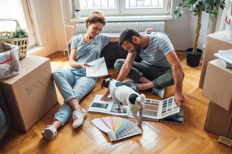 A Pet-Proof Home