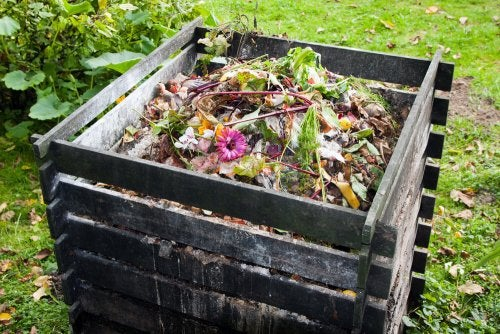 A compost bin designed to receive the waste that comes from ecological dry toilets.